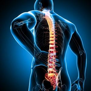гимнастика цигун видео упражнения для спины и позвоночника
